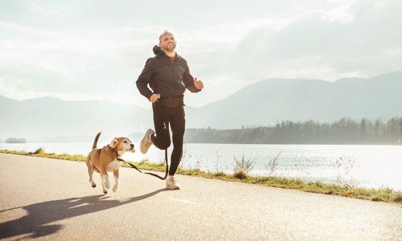 Les sports à pratiquer avec votre chien